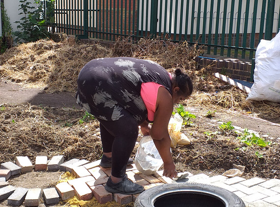 Laying reclaimed bricks for a path