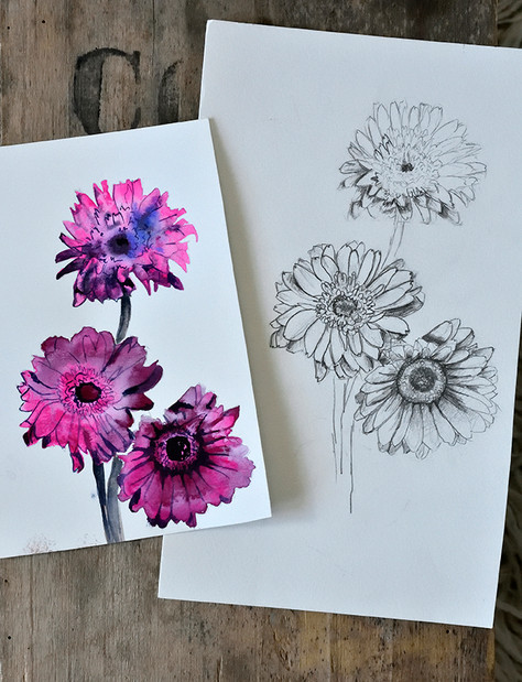 Emma Wild Flowers in pencil and watercol