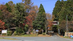 今年の五家荘の紅葉