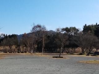立春を迎え、今日は青空の下、、、、小鳥のさえずりも聞こえます。