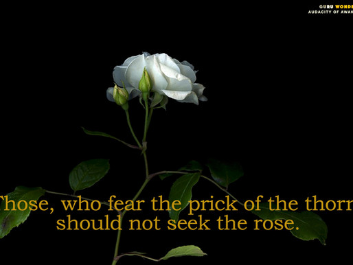 Those, who seek the rose.
