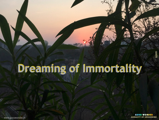 Dreaming of Immortality