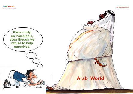 Pakistan seeks help from Arab World