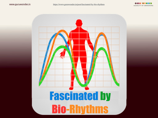 Fascinated by Bio-Rhythms
