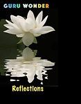 Reflections - Guru Wonder.jpg