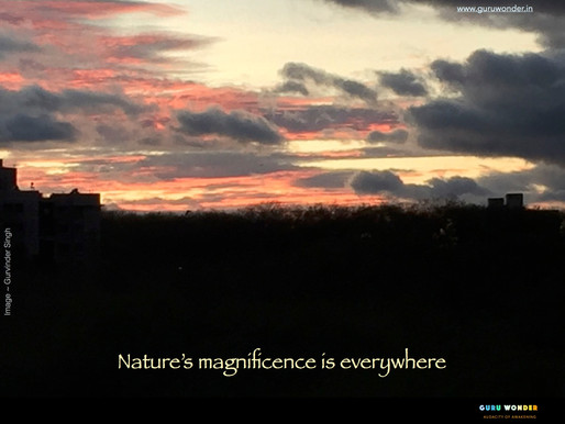 Nature's magnificence is everywhere