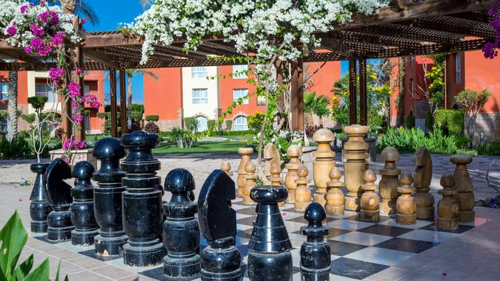 Chess-13.jpg