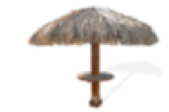 The Palams 9ft Synthetic Thatch Palapa