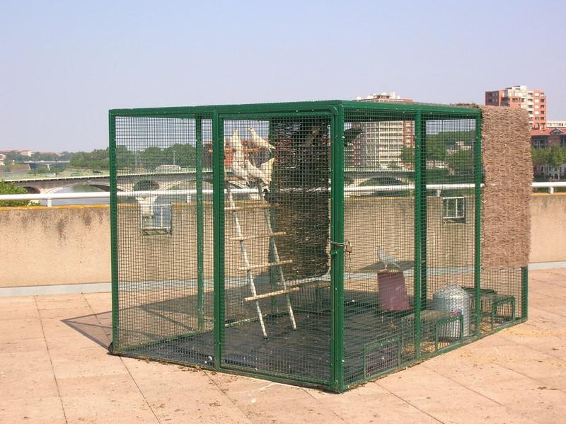 Installation cage 1