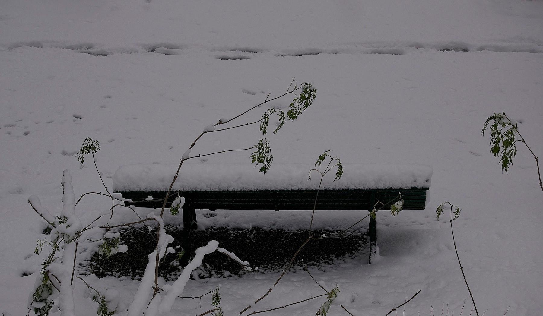 Un rendez vous... des mots ... enfouis et légers un hiver un été je ne sais plus … et toi ?