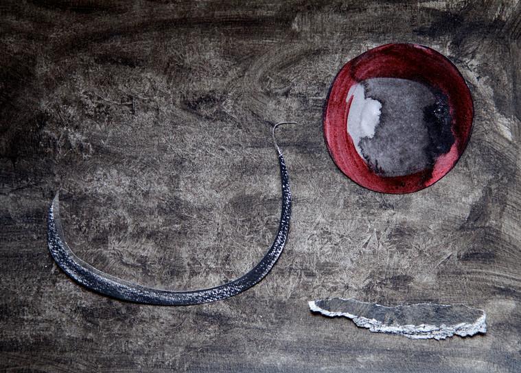 Le Rêve du cygne noir .._