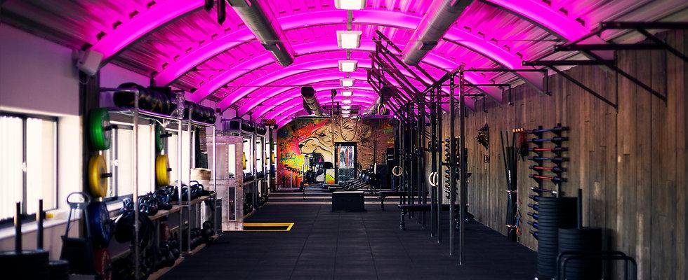 Leo Gym 39.jpg