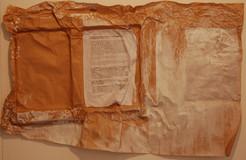 Study, 2007