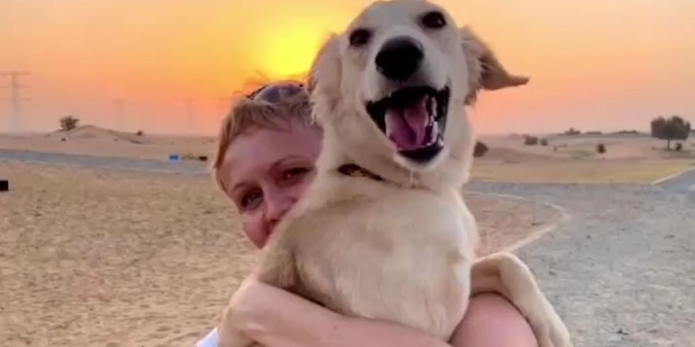 Sunrise Social Distance Volunteer Dog Walk