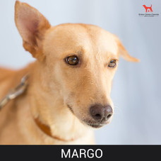 margo.jpg