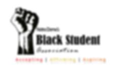 BSA logo new.png
