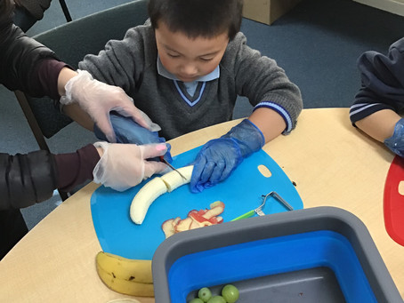 Prep Students Cut, Peel and Grate their way to make a Healthy Fruit Snack.