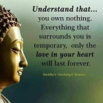 buddha temporary quote