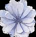 新竹新娘捧花,新竹婚禮佈置,新竹花藝課程