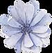 新竹新娘捧花,乾燥花,婚禮佈置