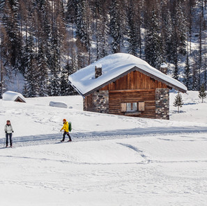 How to Experience Winter Hikes Virtually