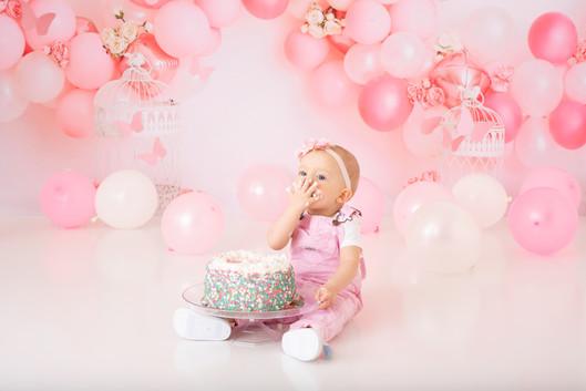 Lerbanon Pennsylvania Cake smash photographer