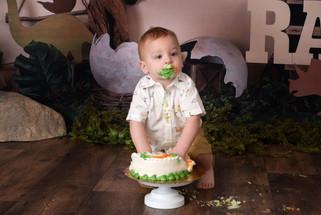 Lebanon Pennsylvania cake smash photographer