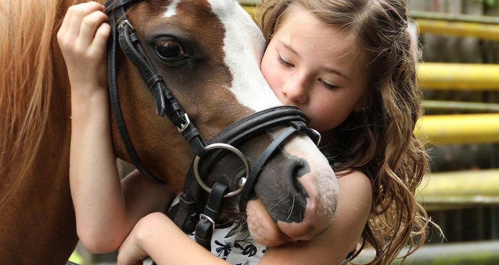 pony-2595144_1920_edited.jpg