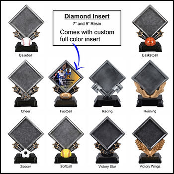 Diamond Insert.jpg