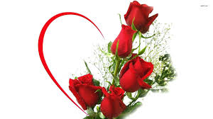 Dagmer 5 rosese
