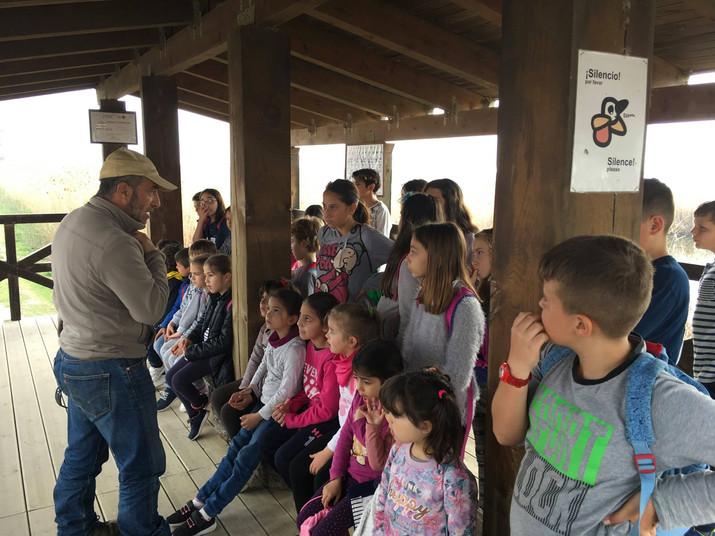 Nuestra excursión a El Hondo