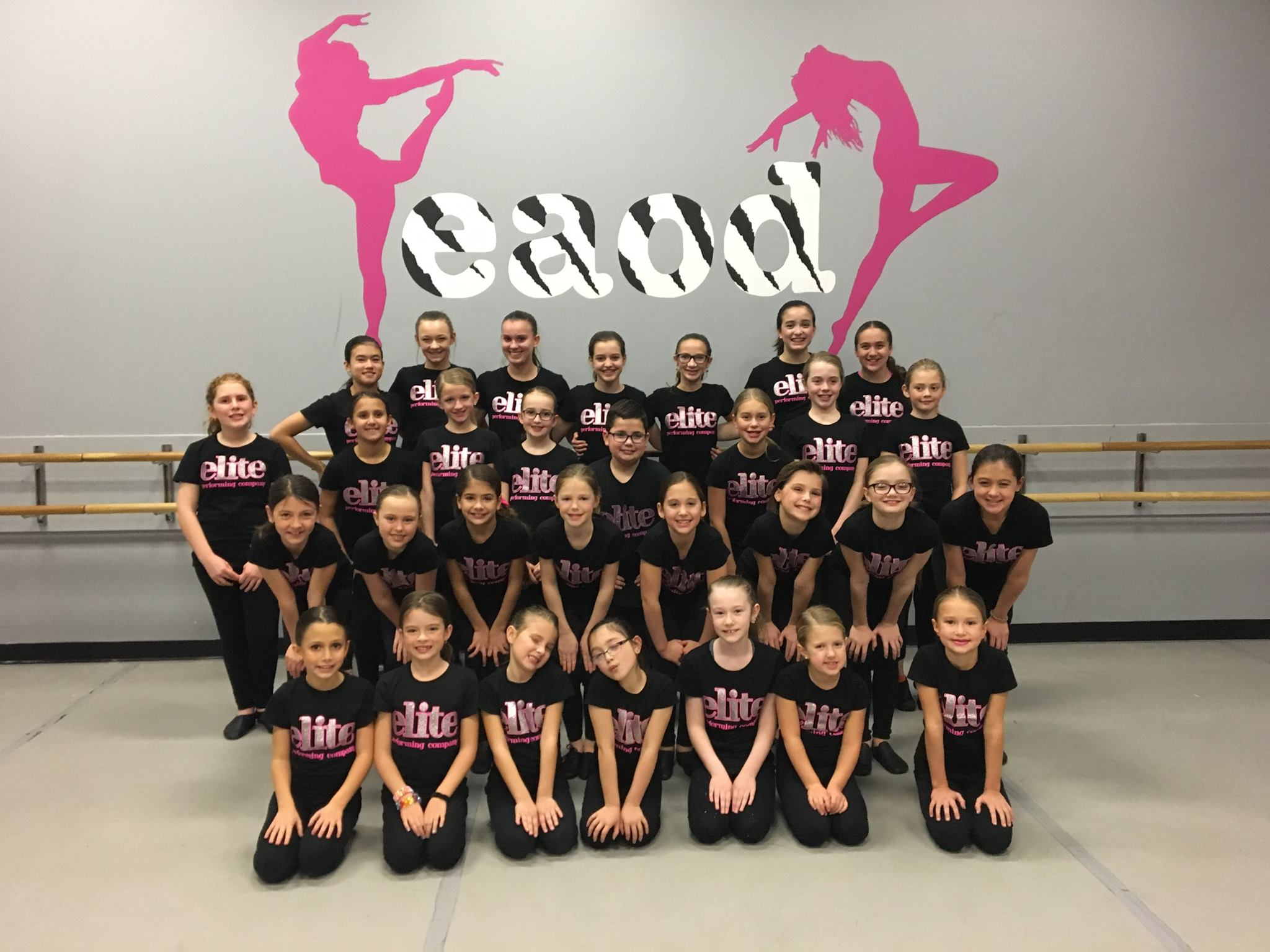 2017-2018 Elite Performing Company