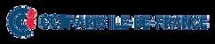 Logo-CCI-Paris-IDF.png