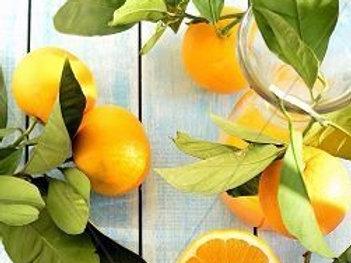 Organic Hand Poured Sweet Tangerine Lip Balm Pot