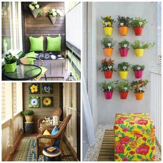 Plantas en espacios pequeños.