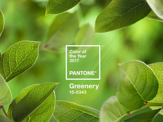 Pantone 2017: Greenery