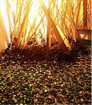 Proyecto: Naturaleza Recuperada por Omar Castillo