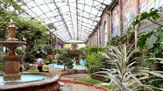 Parque Ecológico Cubitos Jardín Botánico Ollintépetl