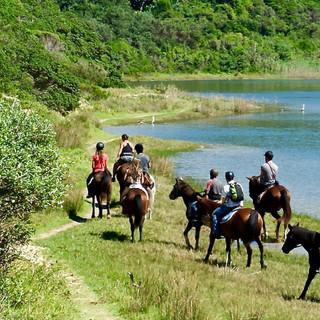 Chintsa Horse route