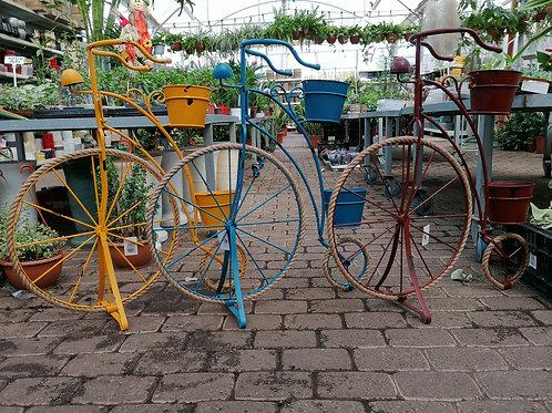 אופניים צבעוניים