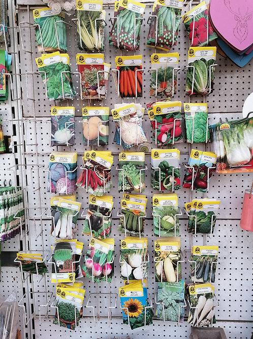 מגוון זרעים לשתילה