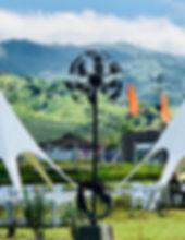 Одуванчик в Колумбии, город Перейра 2018