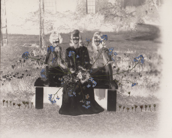 The altar (of the blue forget-me-nots).