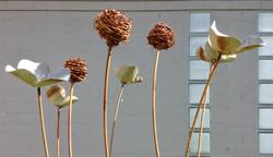FLOWERS (5)/BULRUSH (3)