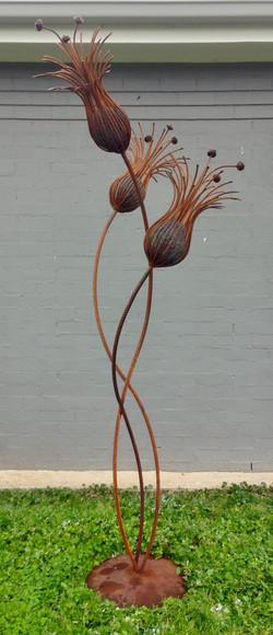 FLOWER BULB X 3 with Contrast Body