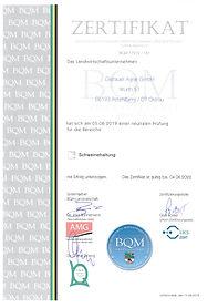 BQM_SMA 2019.jpg