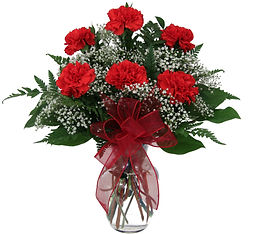 six-red-carnations.jpg