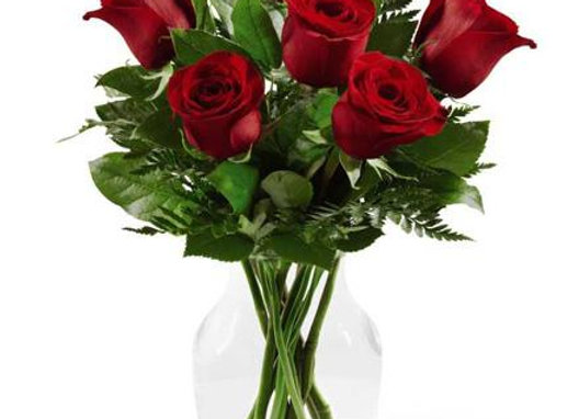 Premier Roses