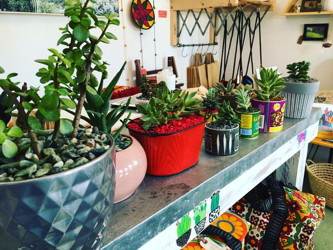 How to Find Your Green Thumb
