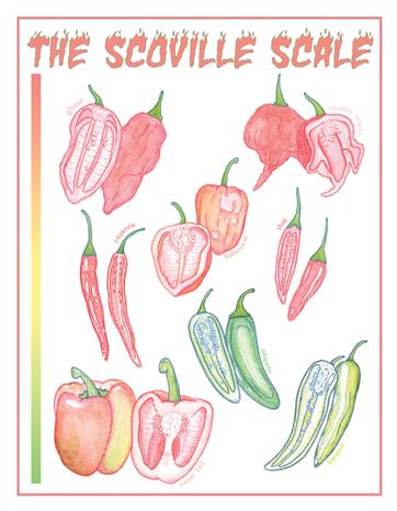 The Scoville Scale